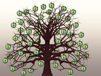 finance-1577984_1920.jpg